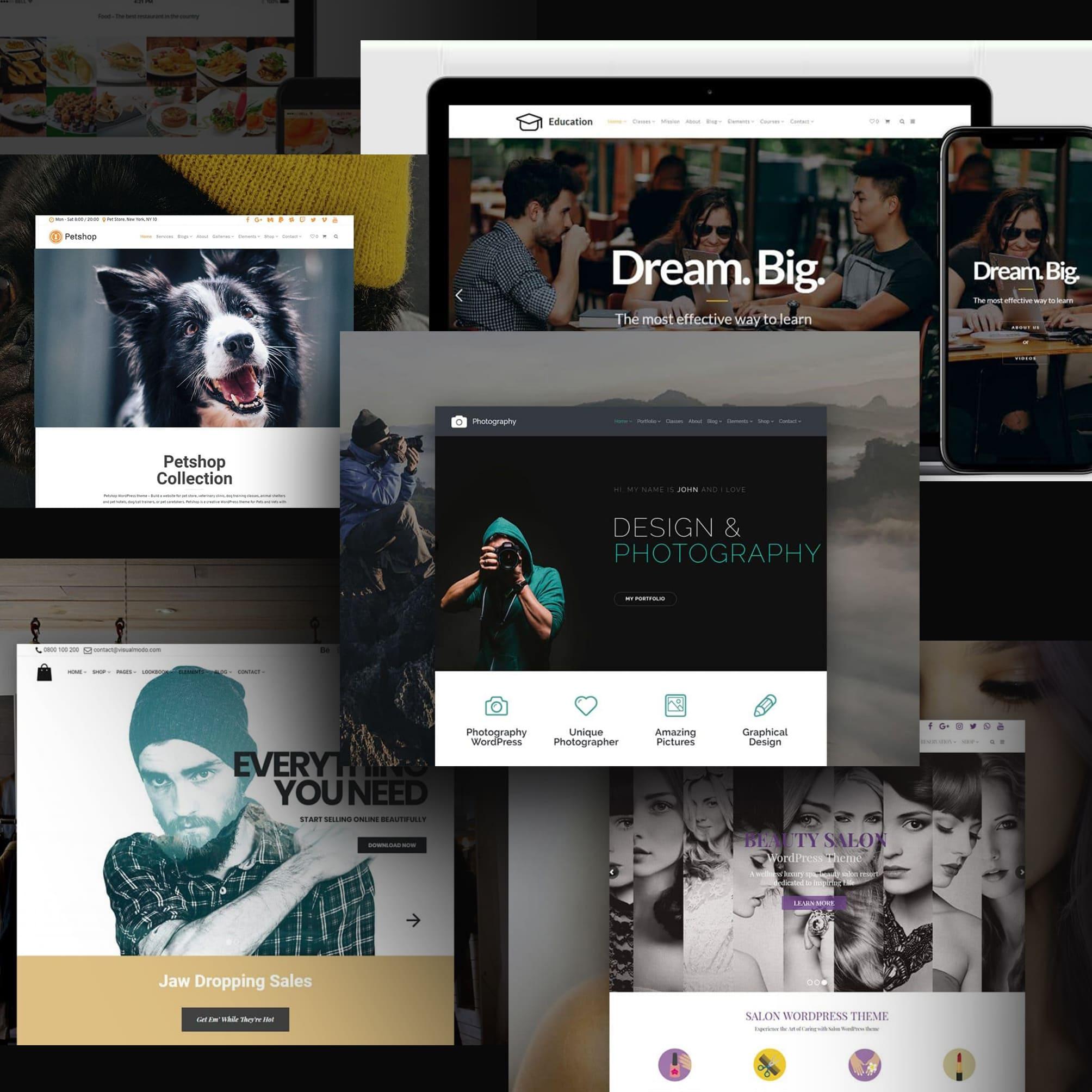 Examples Wordpress Themes.