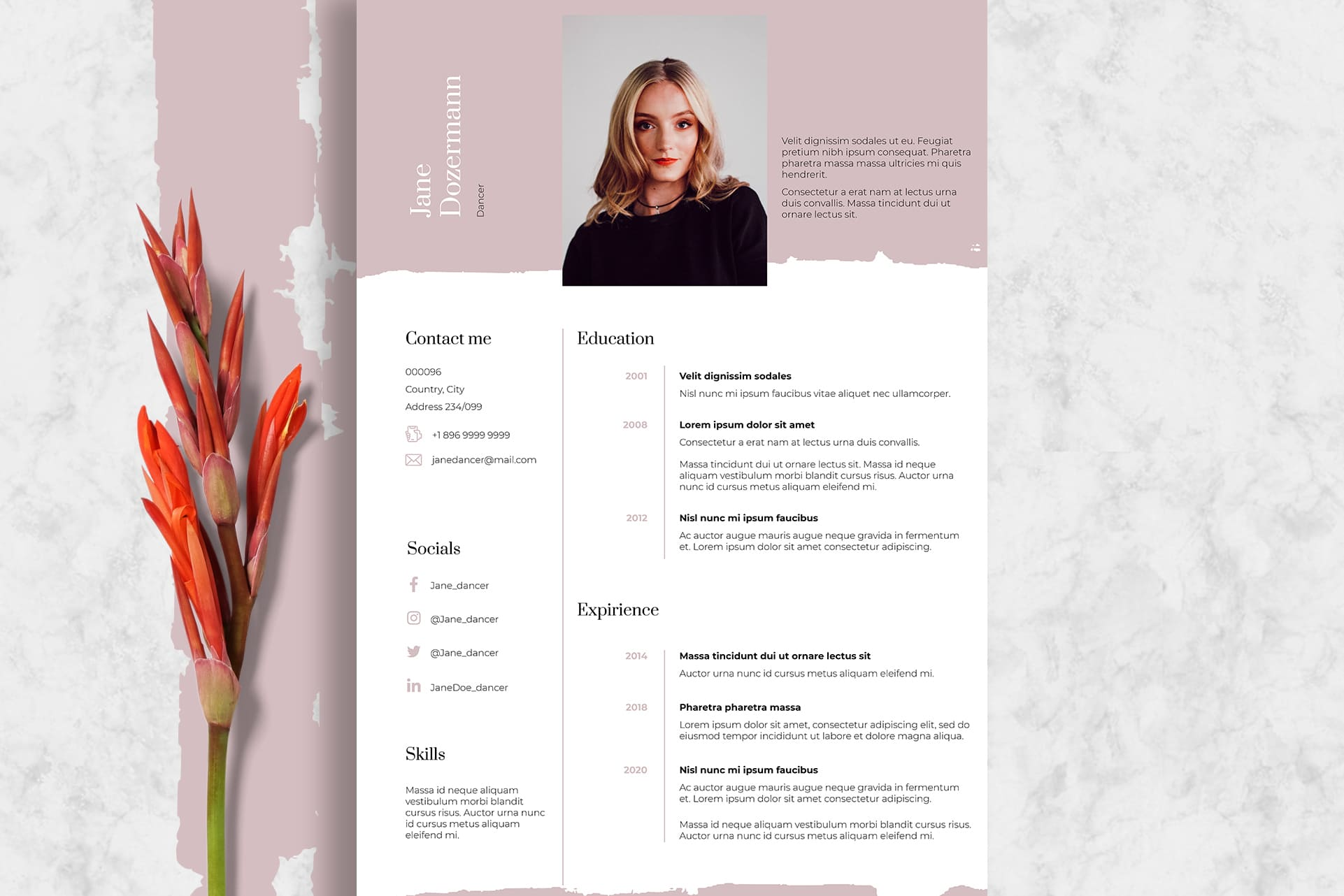 Pink Dance Resume Template Indesign: 2 Variants - Dance3 1