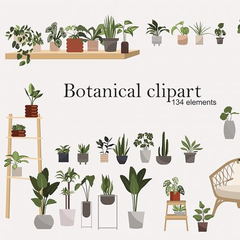 134 Botanical Clipart: Indoor Plants Clipart, Interior Clipart, Furniture Elements - botanical clipart 490x490