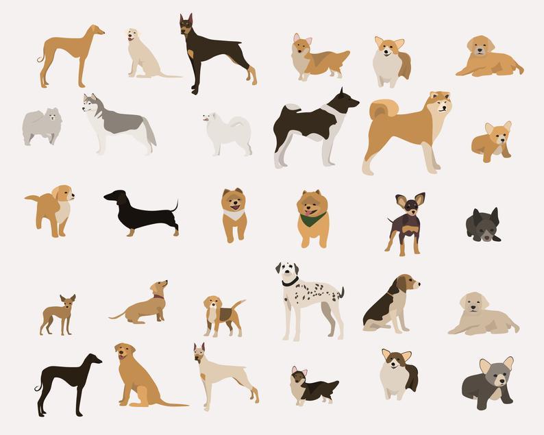 65 Dog Clipart Elements PNG, Ai, EPS - il 794xN.2621827072 mket