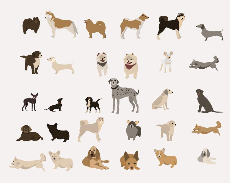 65 Dog Clipart Elements PNG, Ai, EPS - il 794xN.2621827088 qd99