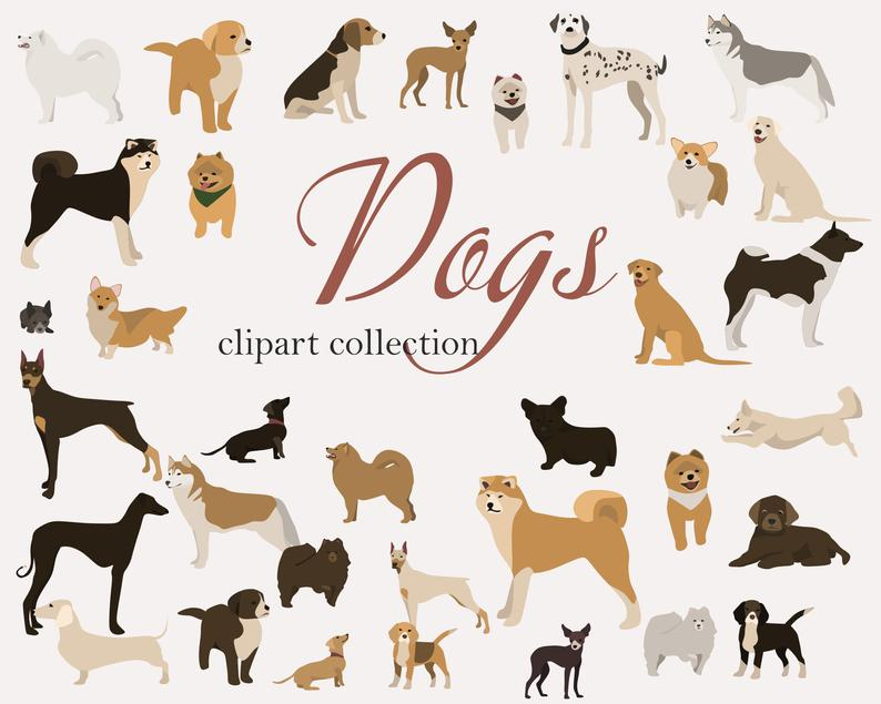 65 Dog Clipart Elements PNG, Ai, EPS - il 794xN.2621827148 80g3
