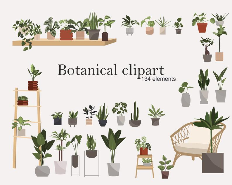 Botanical Clipart