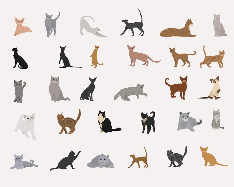 65 Cat Clipart Elements Digital PNG Vector - il 794xN.2656498839 lbr3