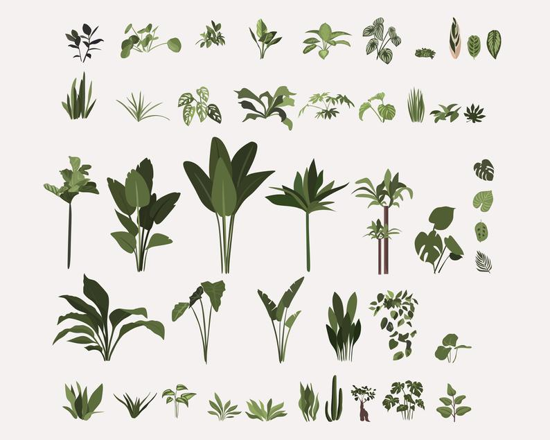 134 Botanical Clipart: Indoor Plants Clipart, Interior Clipart, Furniture Elements - il 794xN.2675043699 9b7f