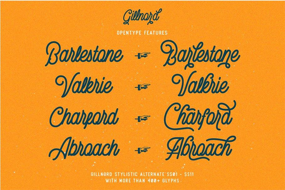 Vintage Monoline Font: Gillnord Script (4 Fonts with Extras ) + 24 Vintage Illustrations - untitled 5