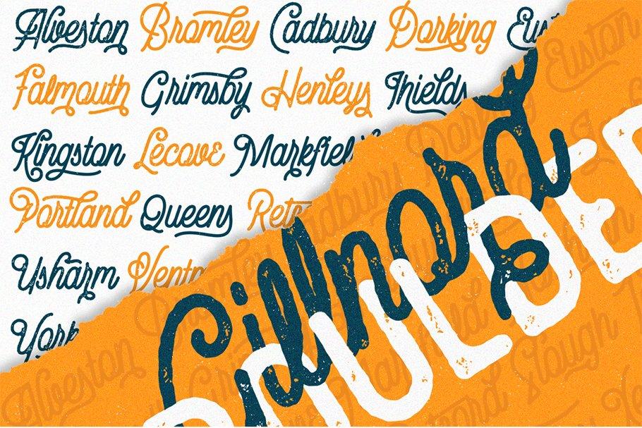 Vintage Monoline Font: Gillnord Script (4 Fonts with Extras ) + 24 Vintage Illustrations - untitled 7