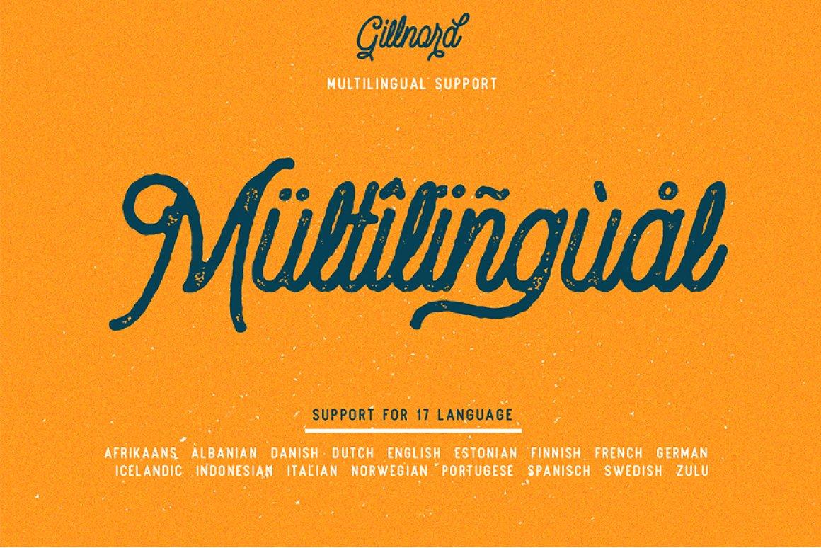 Vintage Monoline Font: Gillnord Script (4 Fonts with Extras ) + 24 Vintage Illustrations - untitled 9