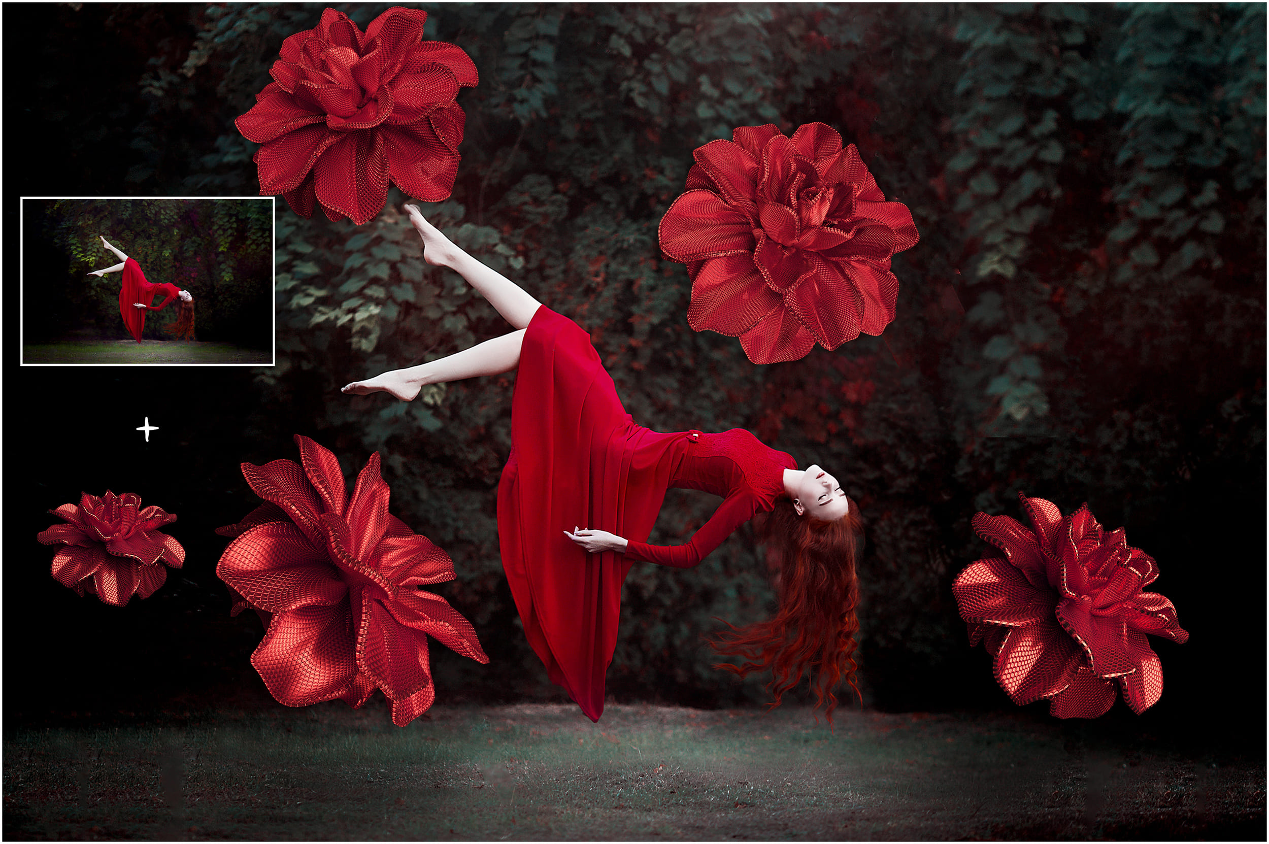 100 Flower Overlays PNG: Red Magenta Flowers - 12 before after