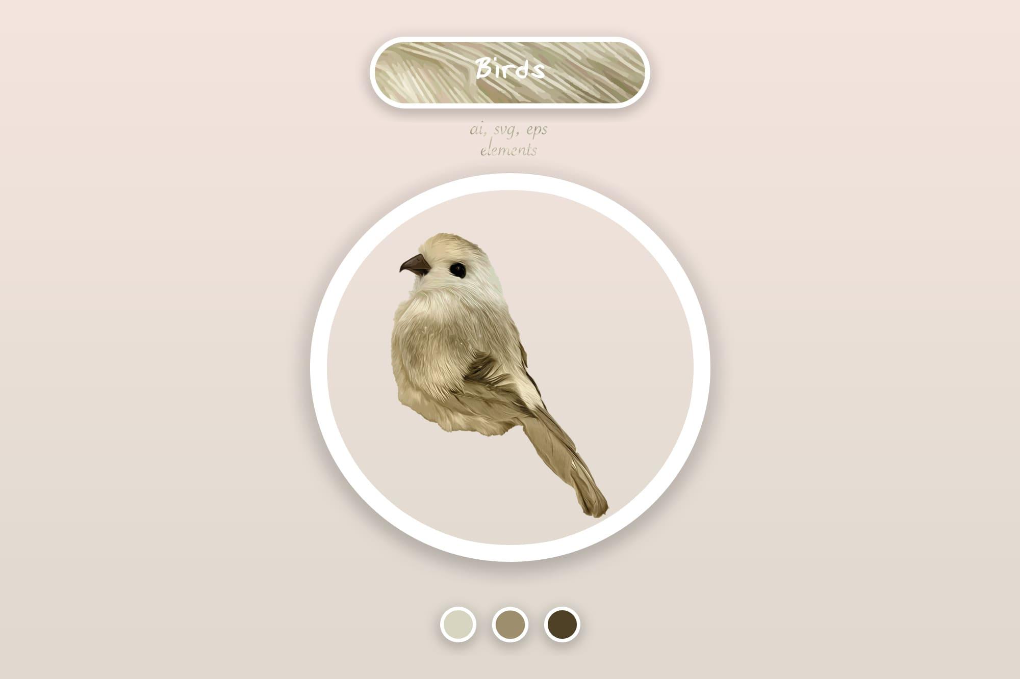 496 Christmas Illustrations: Christmas Vectors Bundle SVG, EPS, AI - Birds 3a
