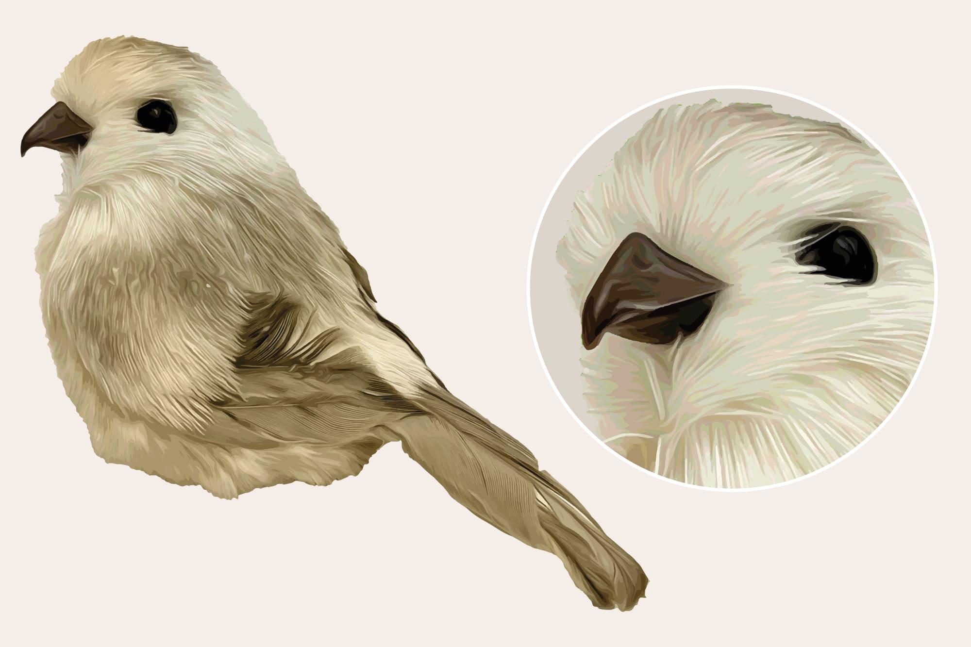 496 Christmas Illustrations: Christmas Vectors Bundle SVG, EPS, AI - Birds 3b