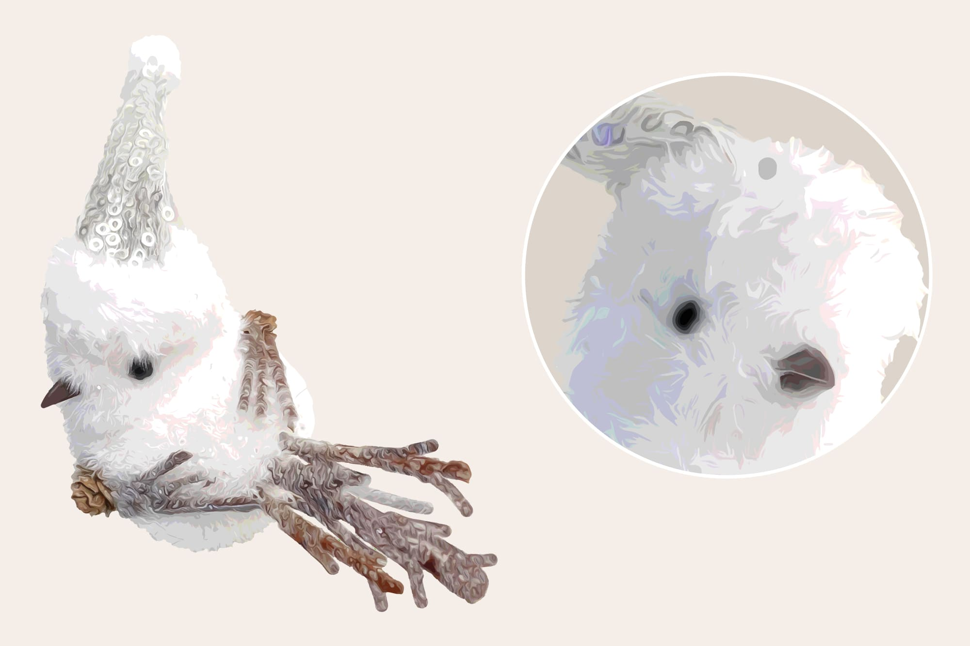 496 Christmas Illustrations: Christmas Vectors Bundle SVG, EPS, AI - Snow Bird b