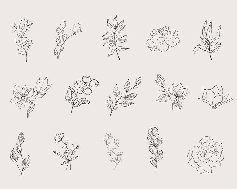 29 Floral Elements Vector: 15 Floral Elements, 8 Frames and 6 Combinations - il 794xN.2779571615 nni6