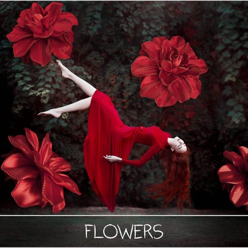 100 Flower Overlays PNG: Red Magenta Flowers - main 490x490