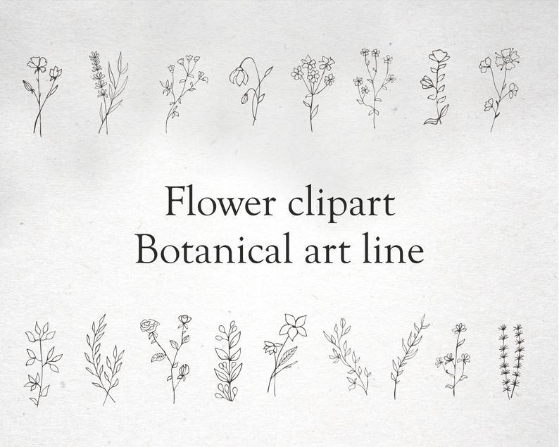 17 Plant Clipart Elements PNG, EPS, AI, SVG - il 794xN.2728303845 an05