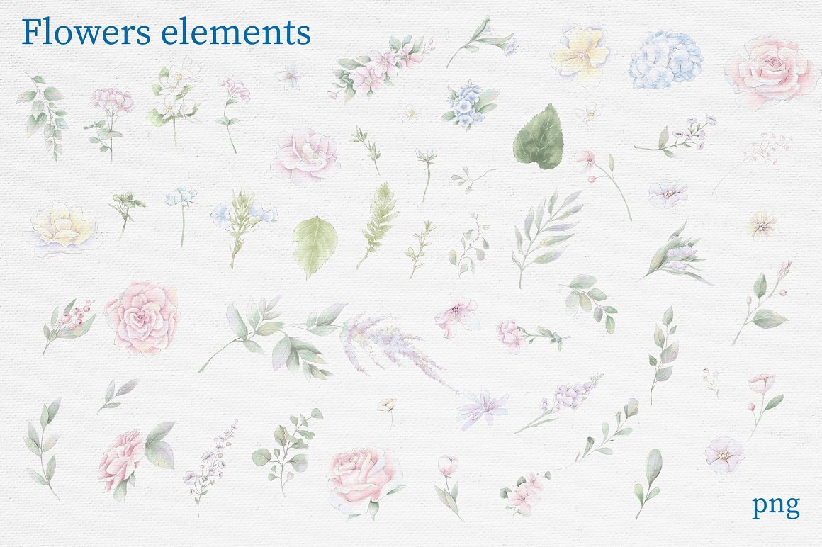 Pink Roses Clipart: Watercolor flowers PNG - 11