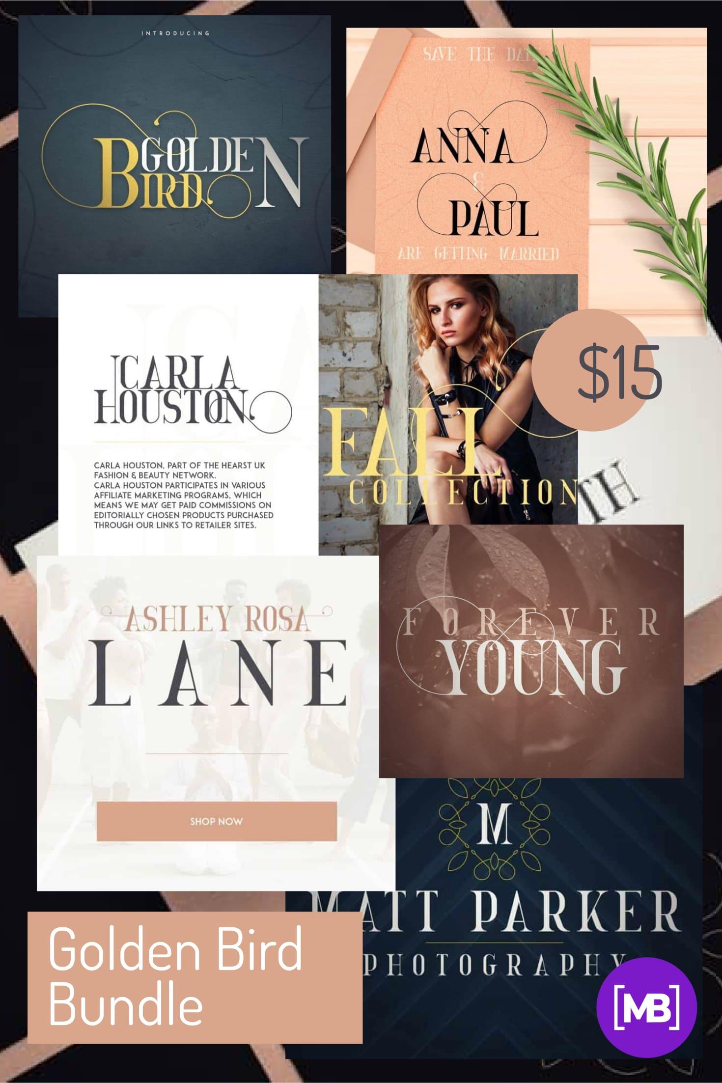 Pinterest Image: Golden Bird Bundle: 2 Serif fonts & Cool Extras.