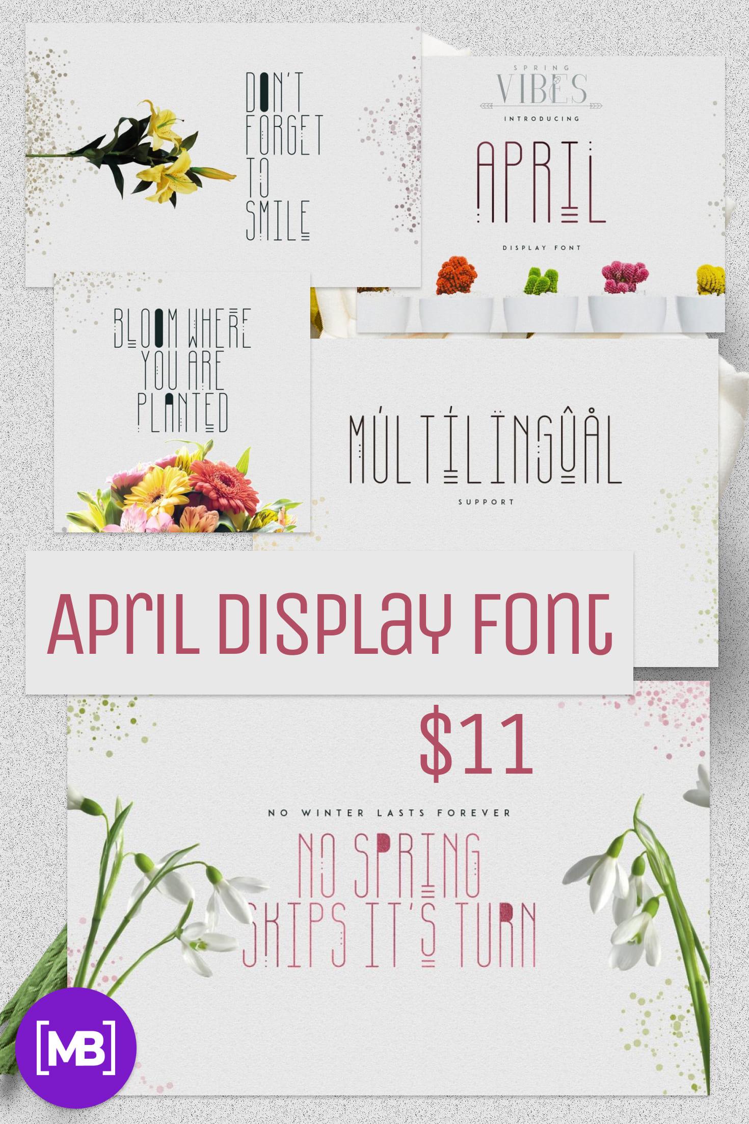 Pinterest Image: April Display Font - $11 ONLY.