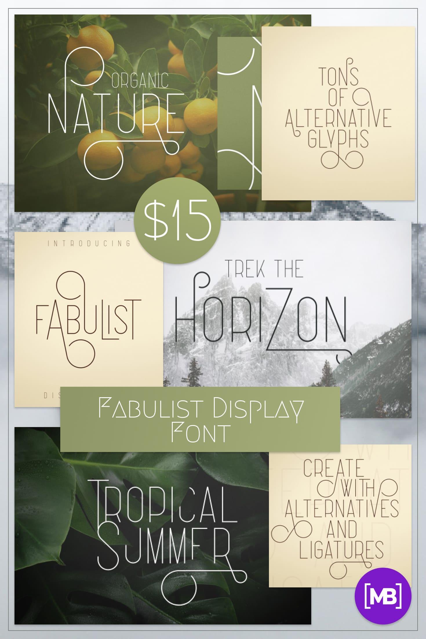 Pinterest Image: Fabulist Display Font - $15.