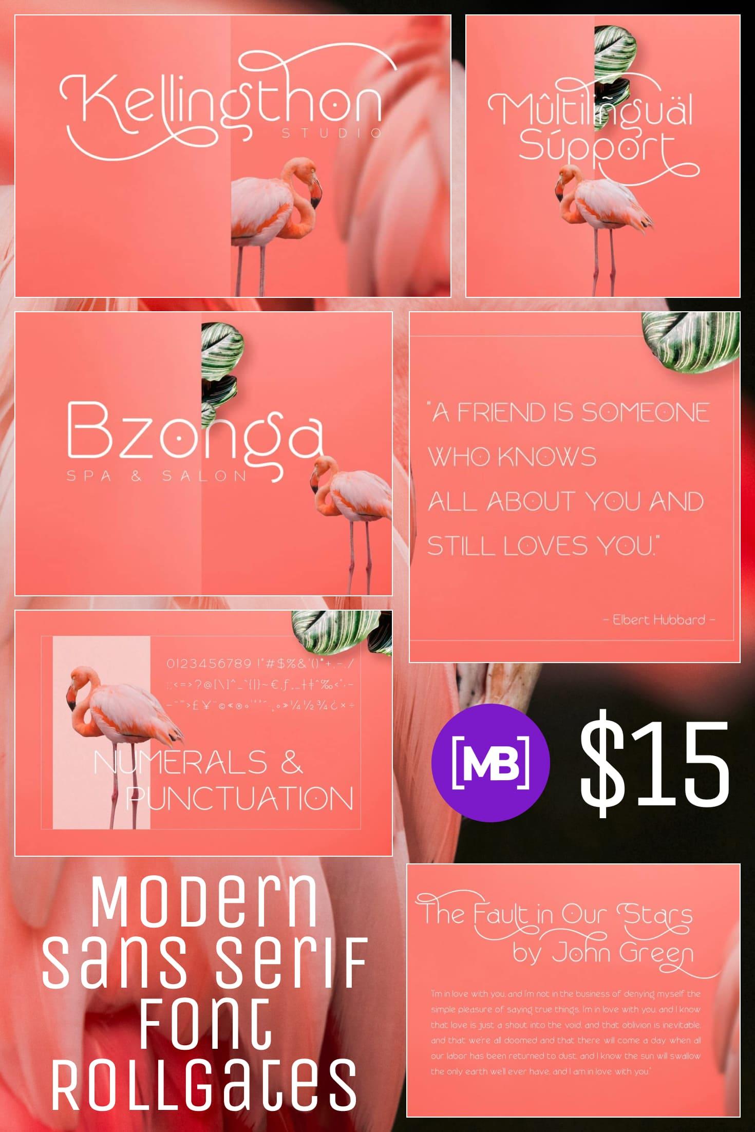 Pinterest Image: Modern Sans Serif Font - Rollgates - $15.