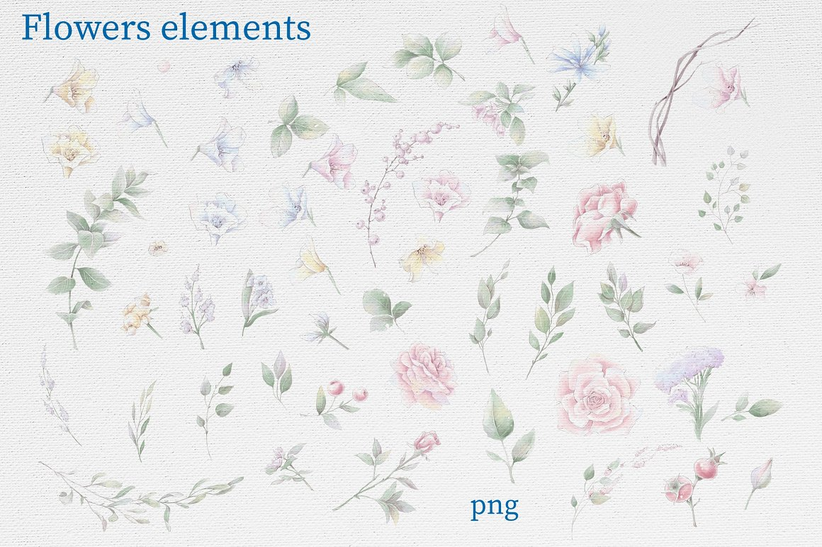 Pink Roses Clipart: Watercolor flowers PNG - 9