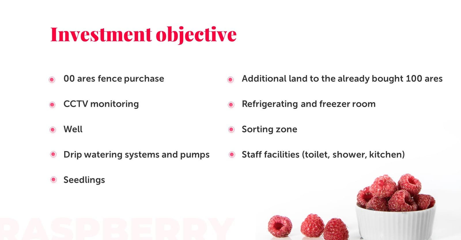 Feminine Presentation: Raspberry Powerpoint, Google Slides, Figma & Keynote Templates - Slide18