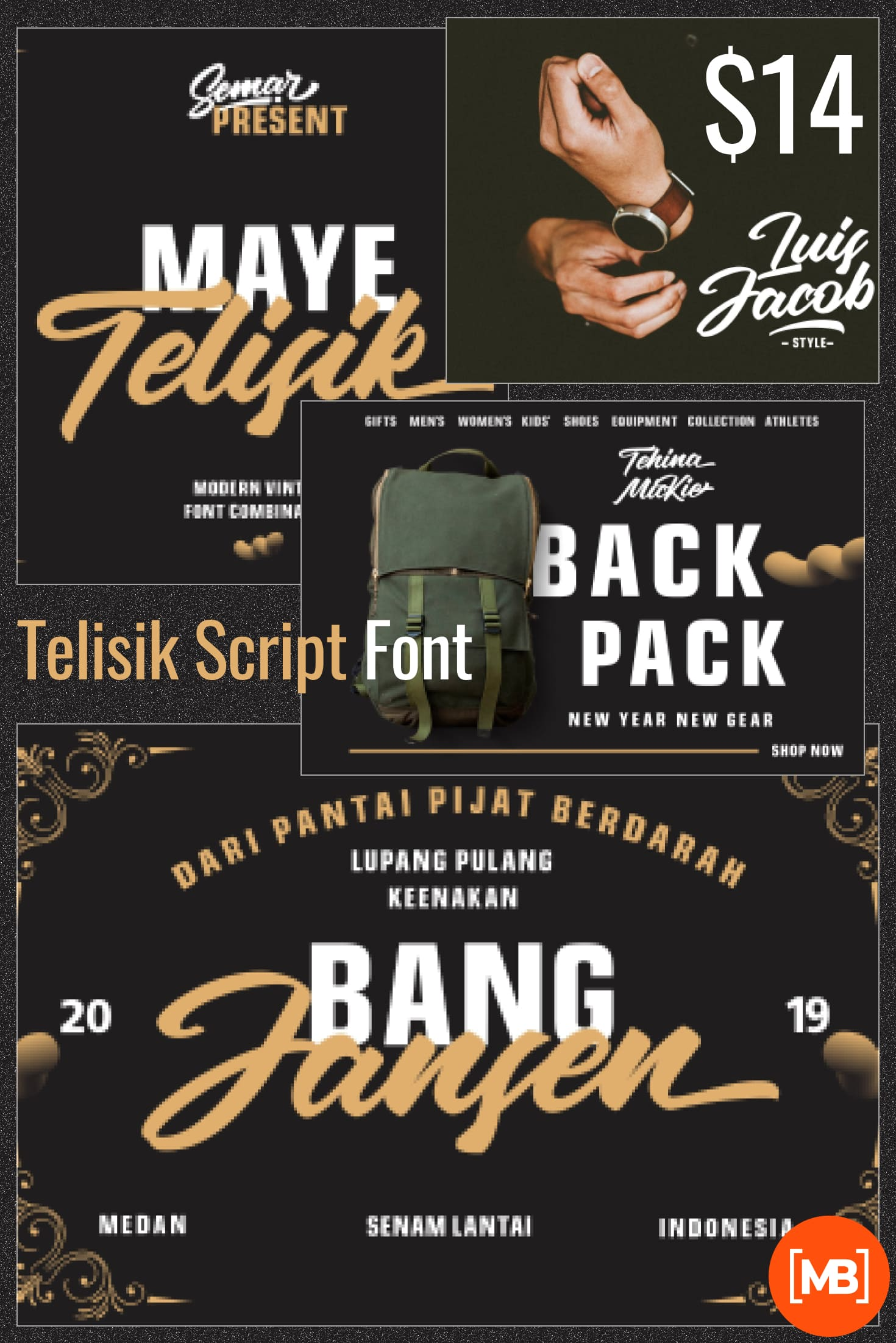Telisik Script Font - $14.Collage Image.