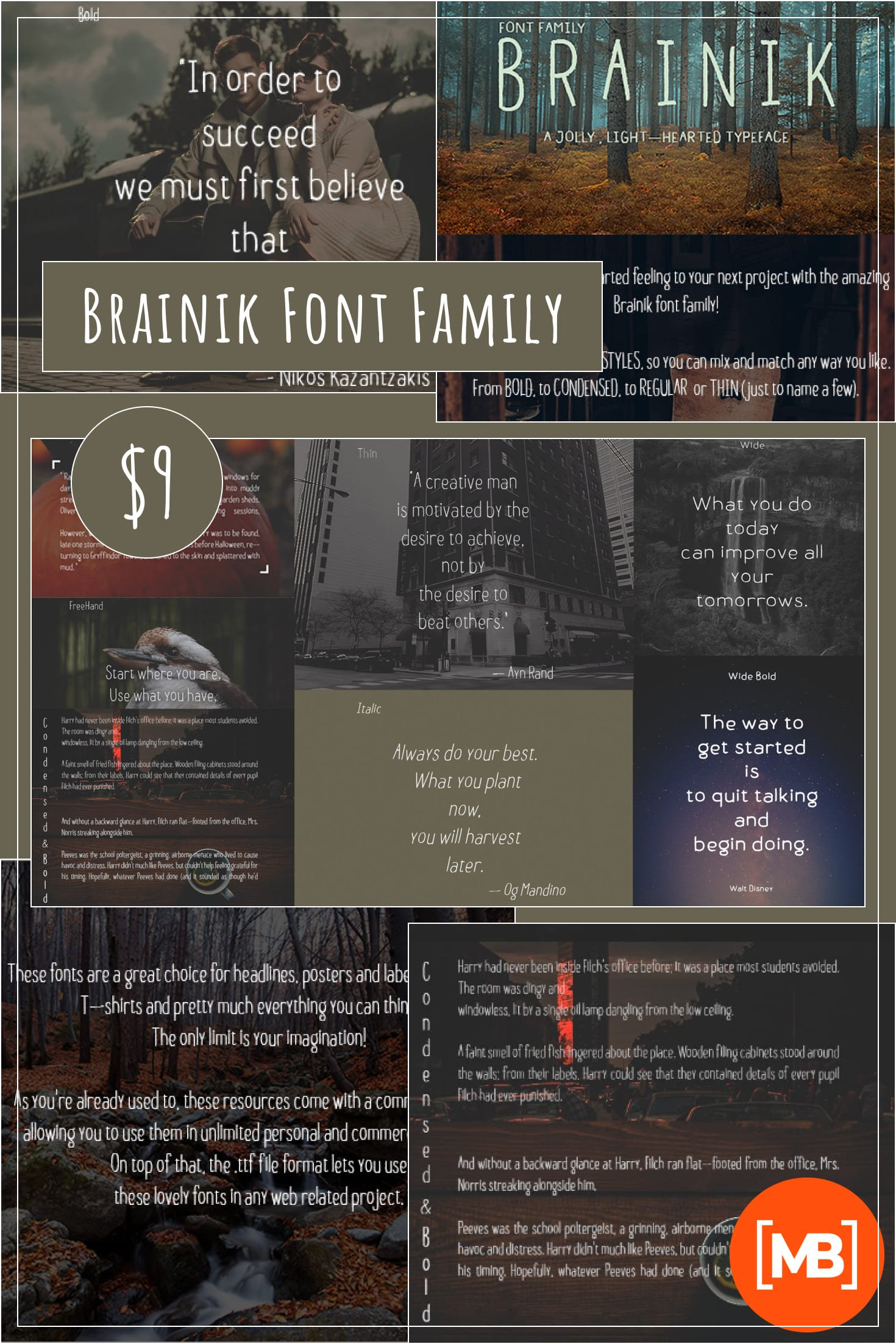 Brainik Font Family: a Typeface You'll Love - Just $9!. Collage Image.