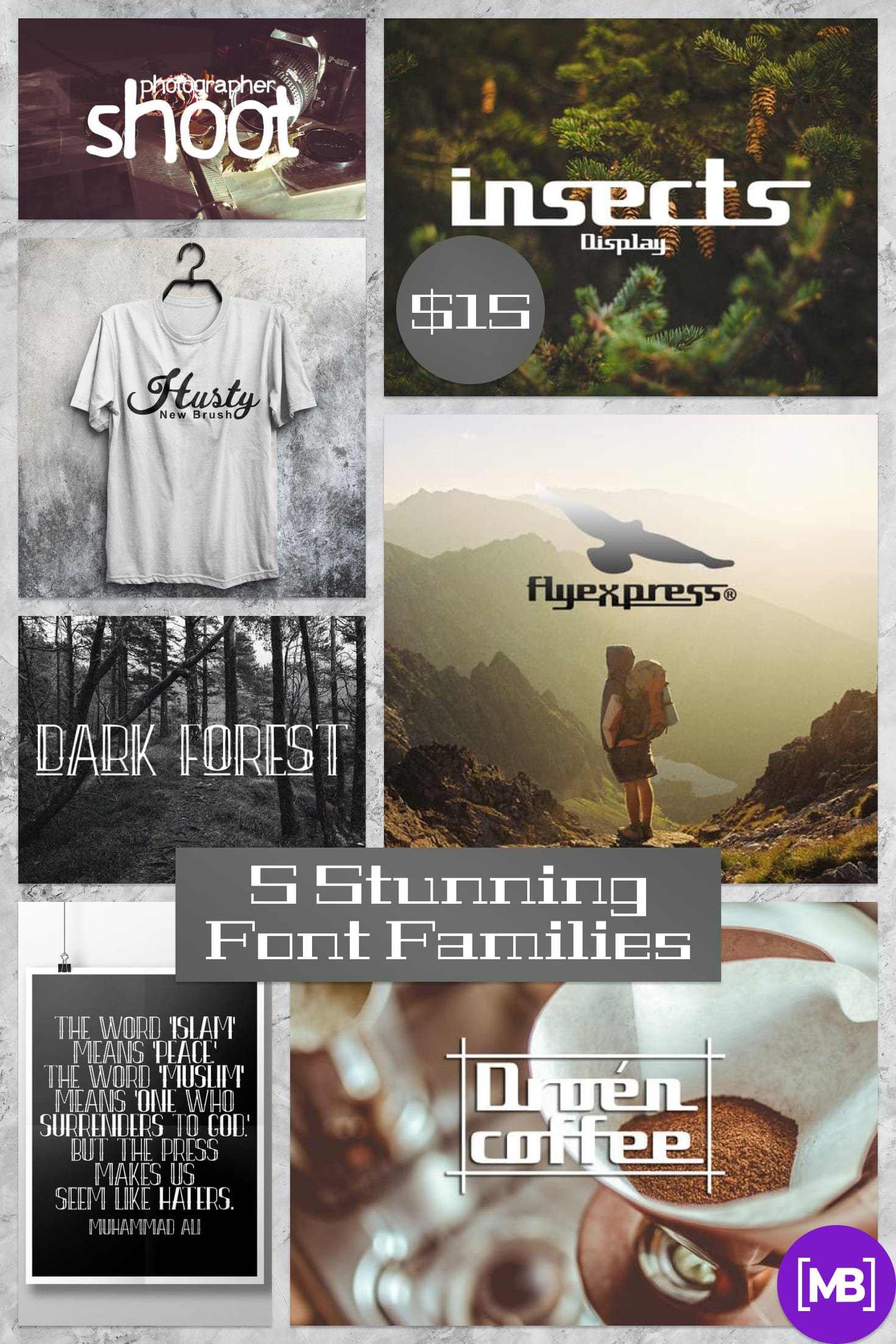 5 Stunning Font Families  - $15 Only!. Collage Image.