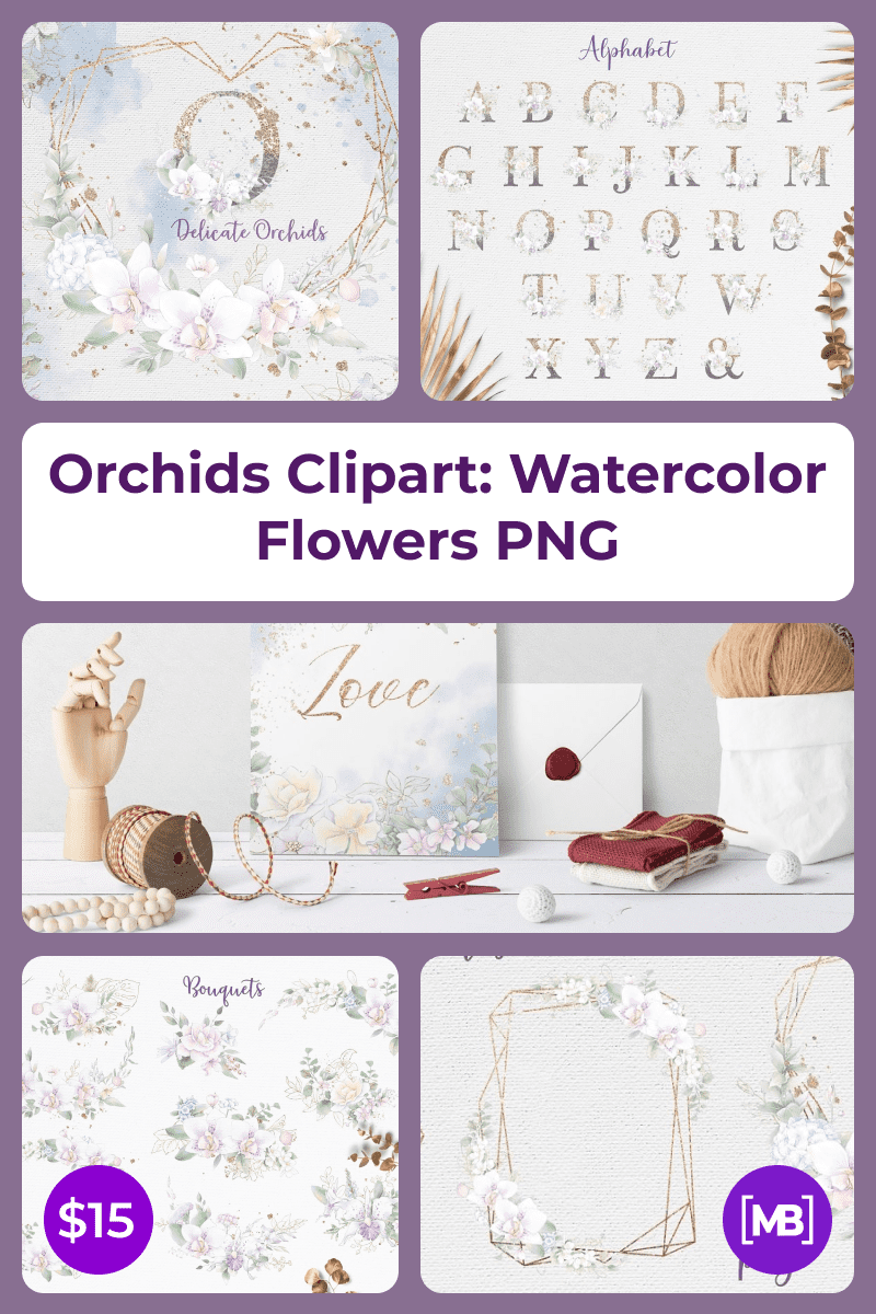 Orchids Clipart: Watercolor Flowers PNG. Collage Image.