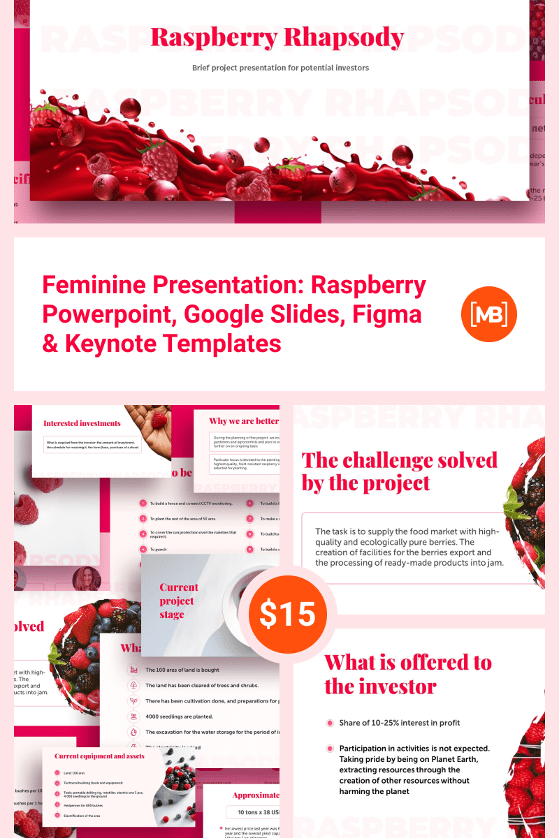 Feminine Presentation: Raspberry Powerpoint, Google Slides, Figma & Keynote Templates. Collage Image.