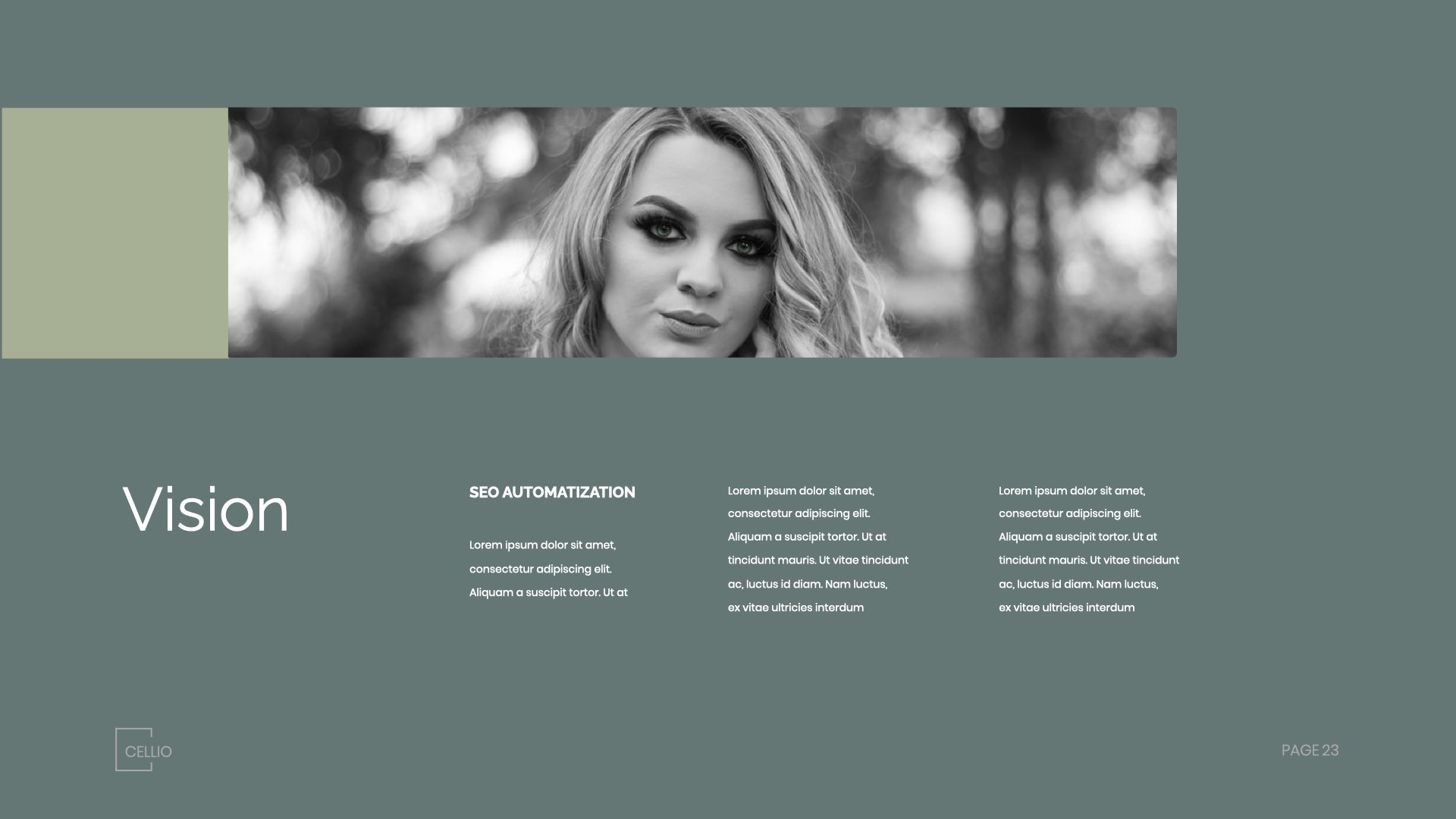 Olive slide with black and white photo and text box. Simple and tasteful.