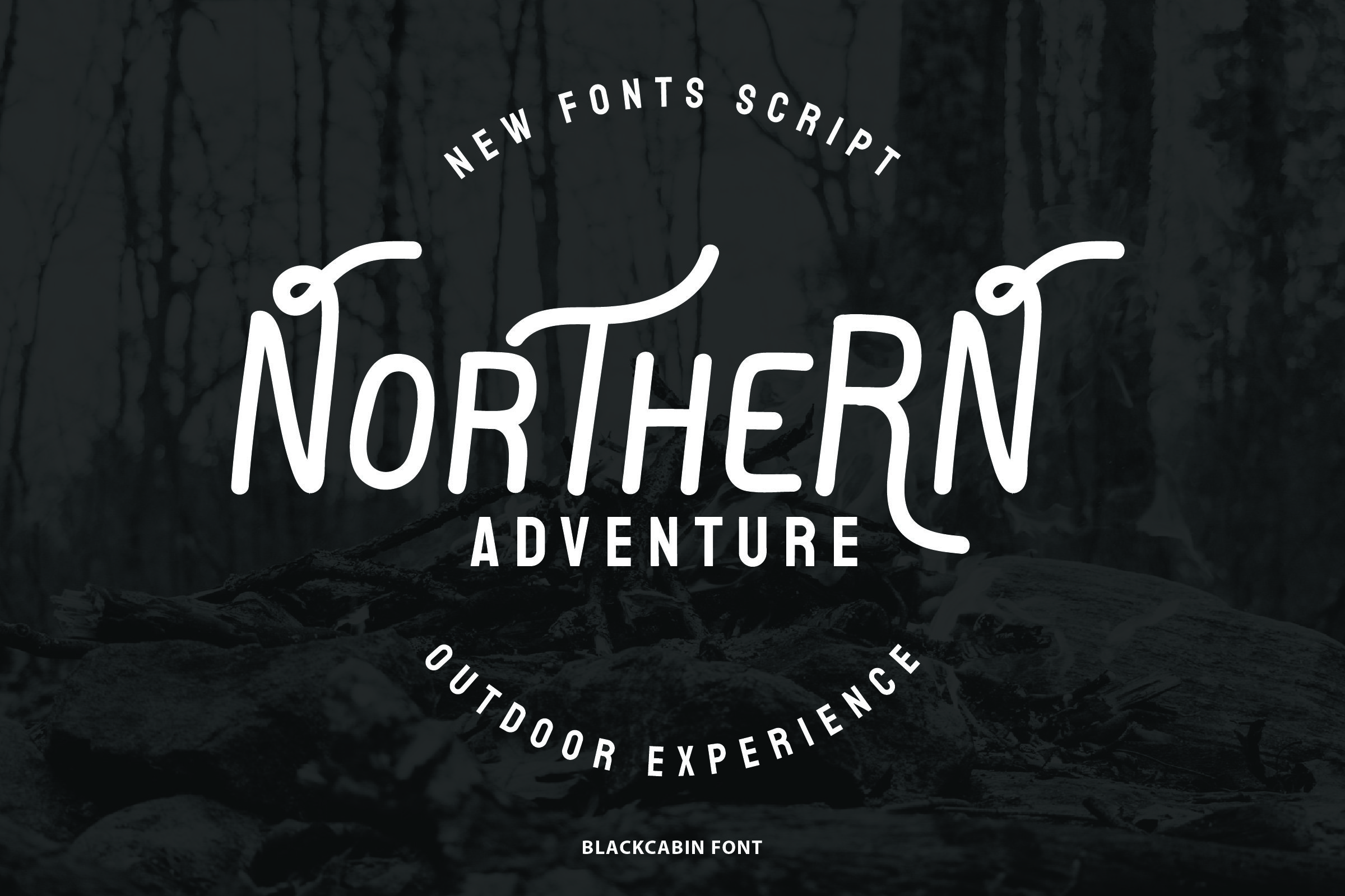 Smooth sans serif font on a forest background.