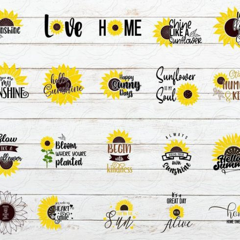 Sunflower Quote SVG Bundle