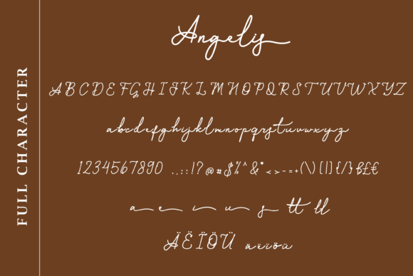 General view of font in all variants. Monoline Script Font.