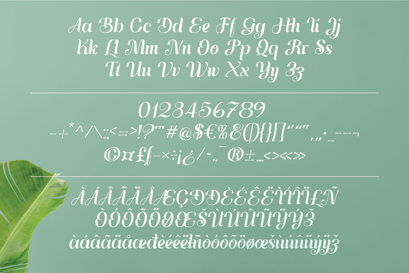 The general appearance of the font is depicted on a light turquoise background.