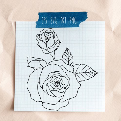 Cover Rose Flower Line Art Graphic Illustration Blooming Line Art.