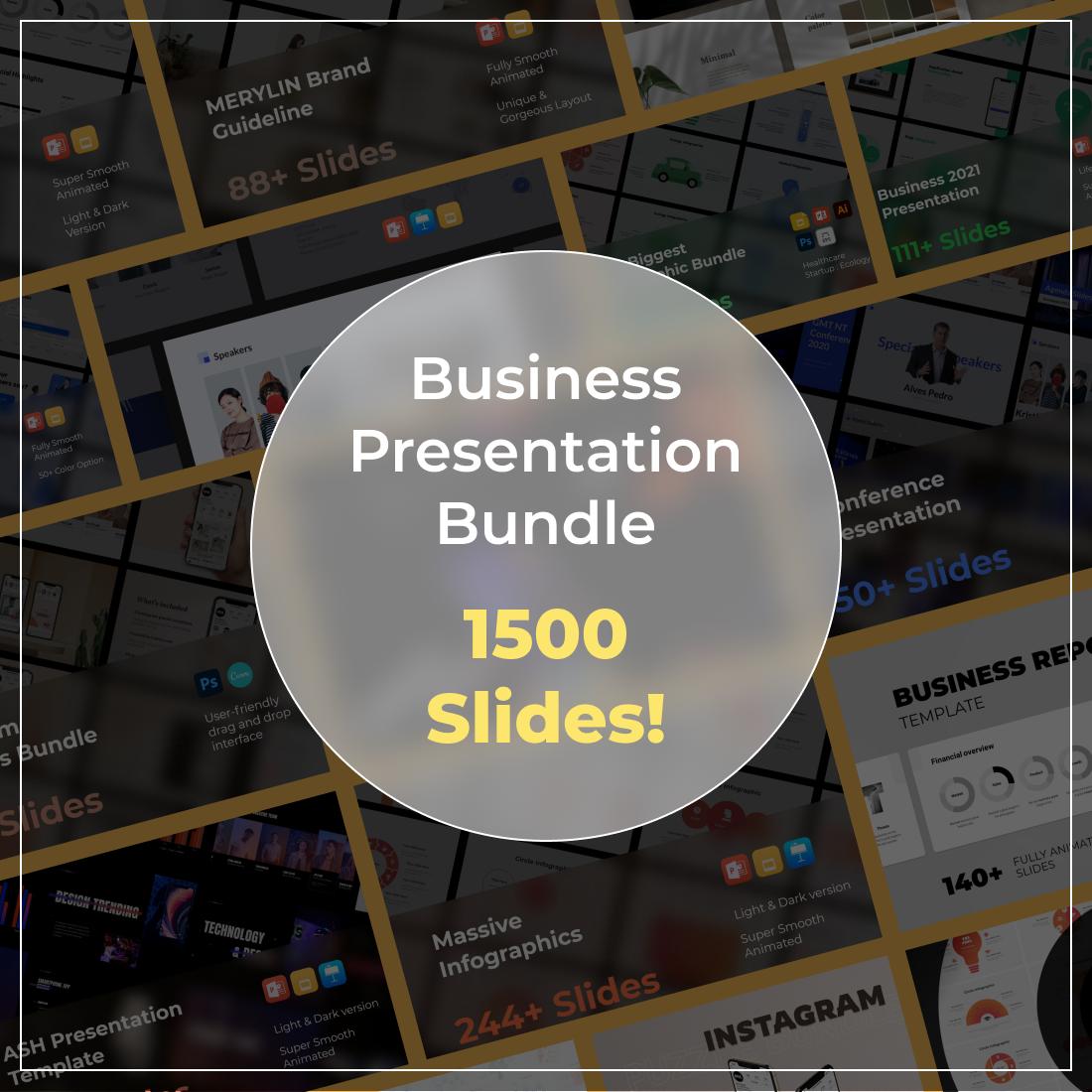 Business Presentation Bundle Description