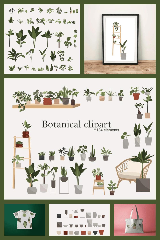 134 Botanical Clipart: Indoor Plants Clipart, Interior Clipart, Furniture Elements - MasterBundles - Pinterest Collage Image.