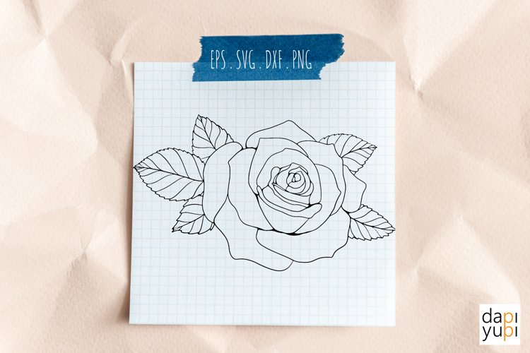 Hand drawn rose on the paper.