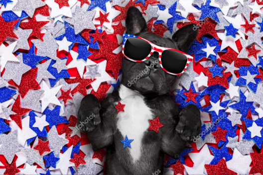 Independence Day Clipart 8