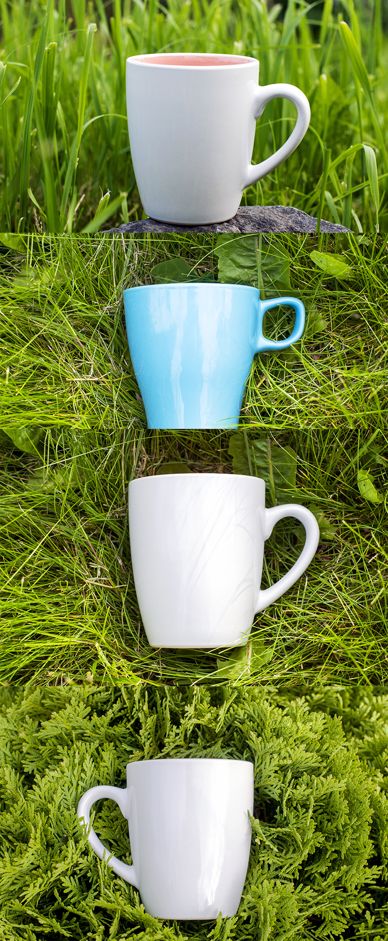 Light large mugs on a green lawn.