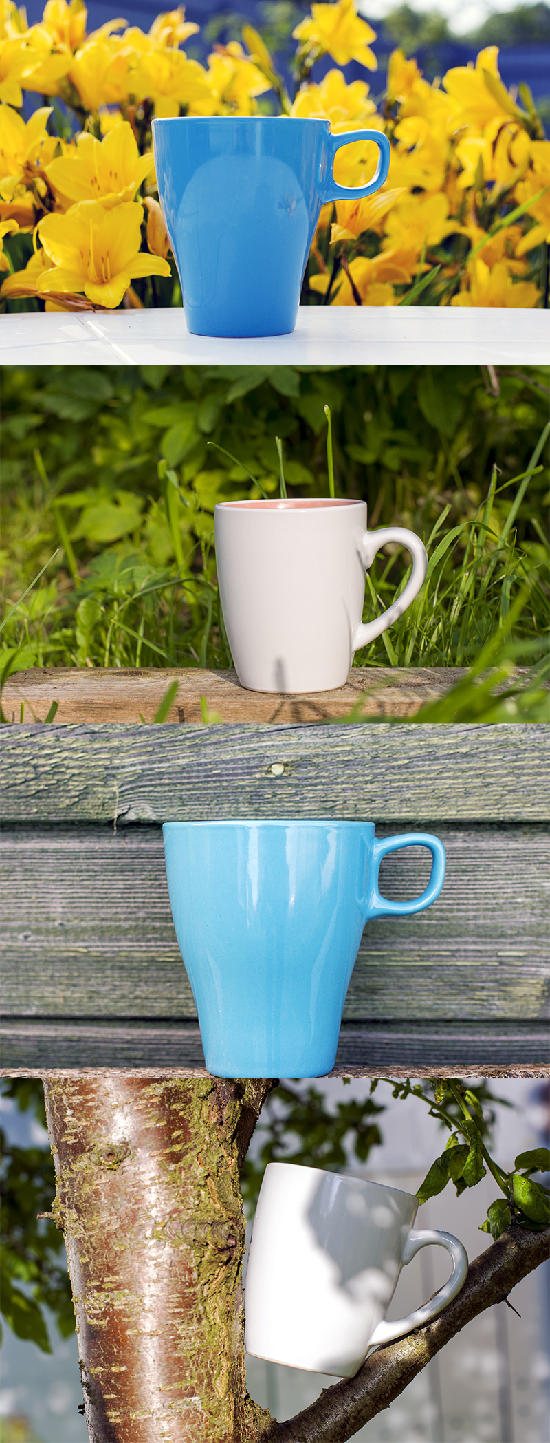 The mugs went out for a walk. They can be seen on a bench, near flowers and even between branches.