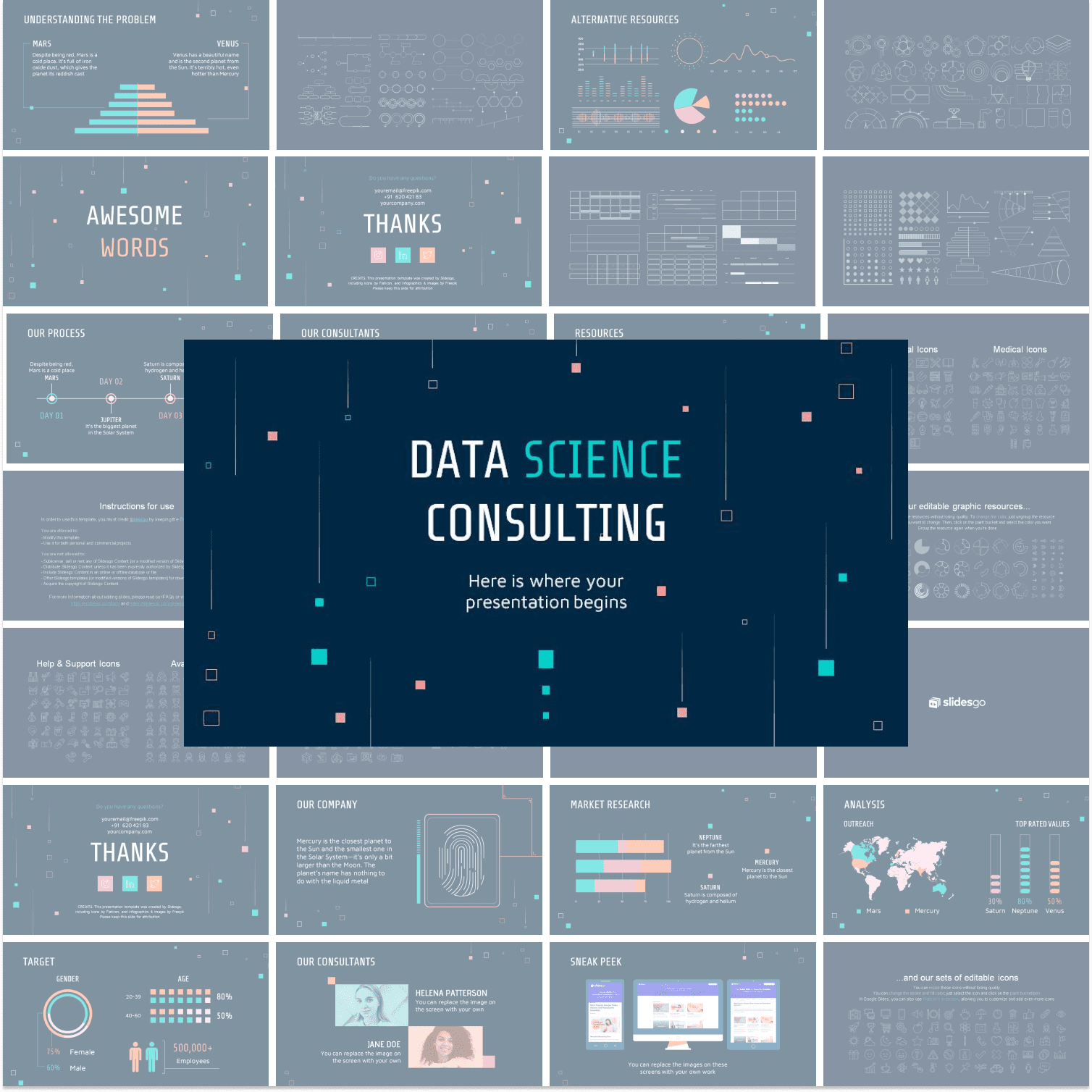 Preview image Data Science Consulting Presentation.