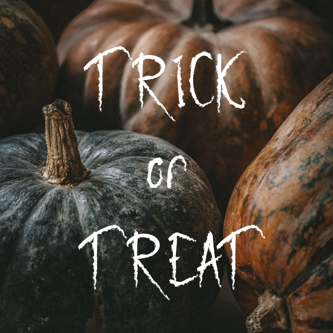 Trick or Treat with free halloween font by MasterBundles.