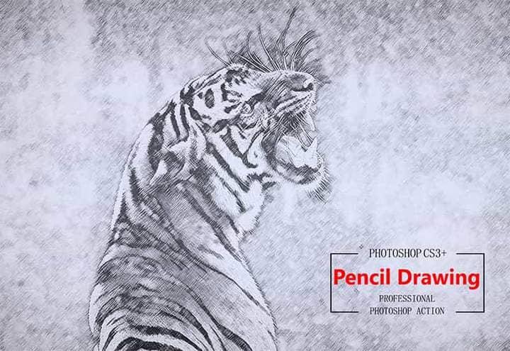 Tiger Pencil Sketch Effect Photoshop.