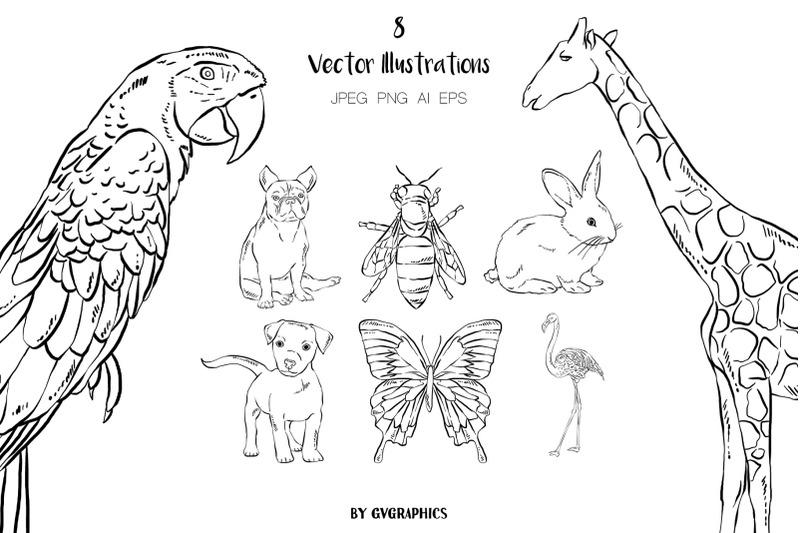 800 3830583 zwwqqb82pt7fl6huhelnd9zoo7y7gfuwe9vle8vz 8 hand drawn animals vector illustrations