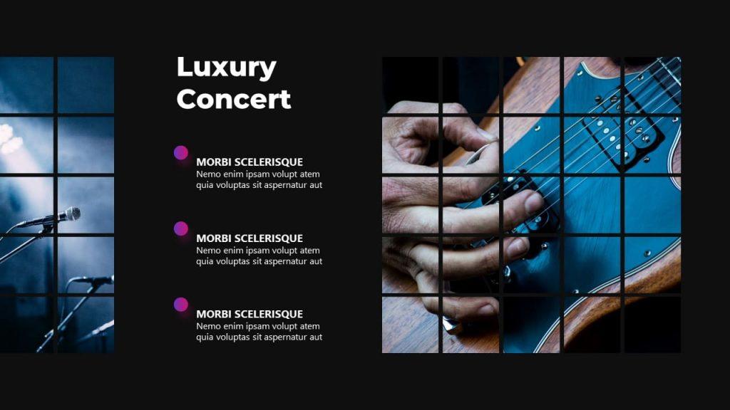 Description Slide Luxury Concert Musical PowerPoint Presentation.