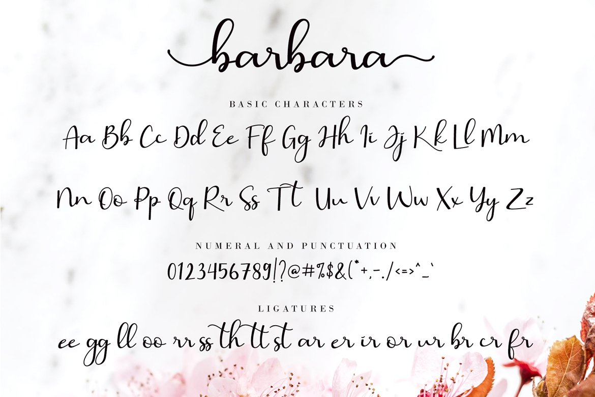 Script consisting of a fashionable sophisticated signature-style script with its own unique curves and an elegant inky flow.