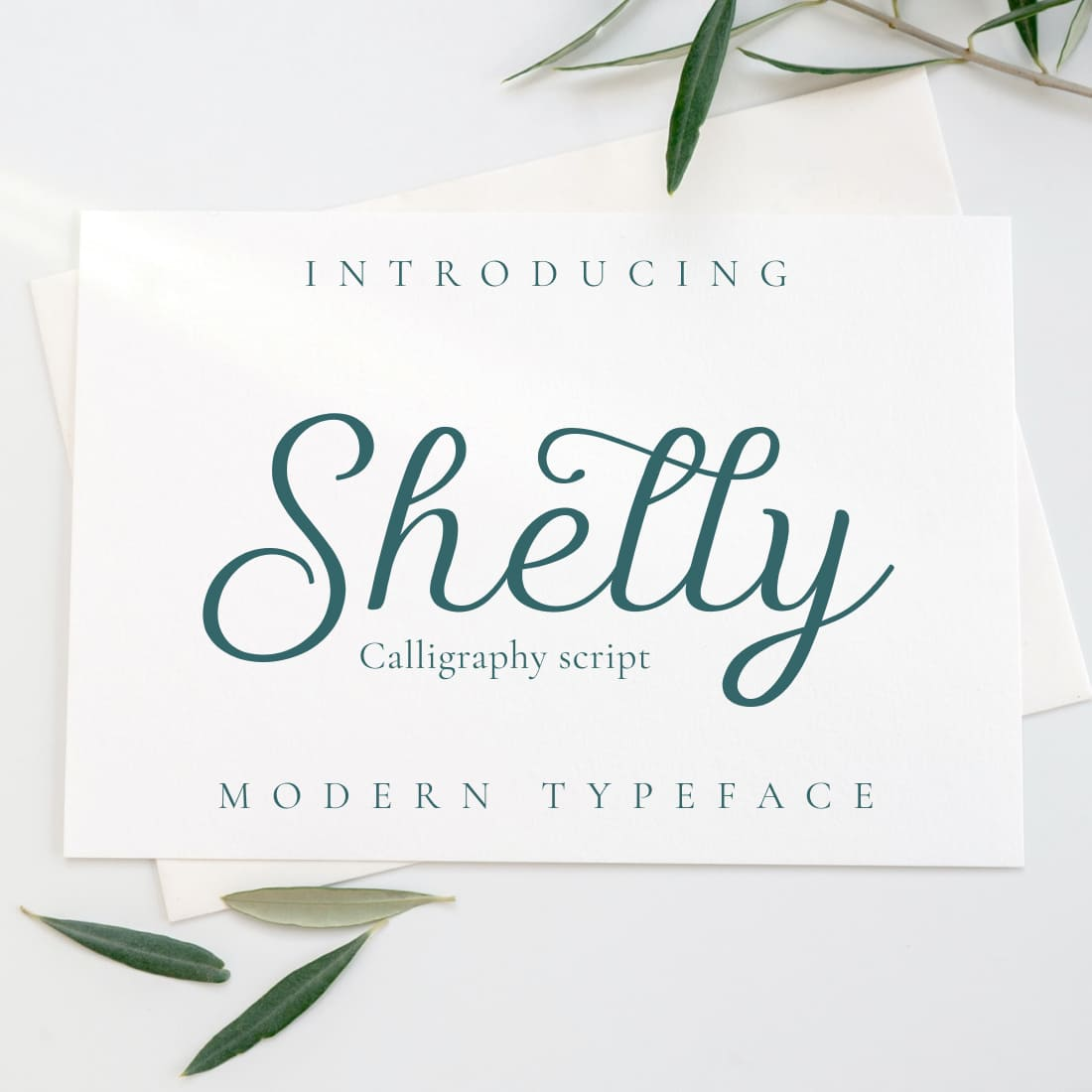 Shelly free script font Cover Collage Image by MasterBundles.